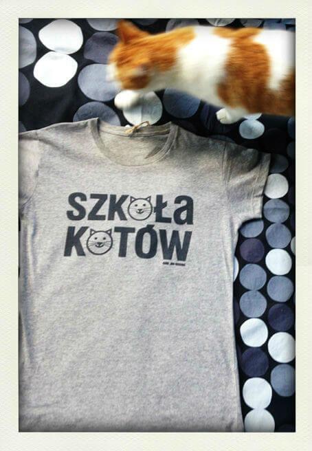 Szkoła kotów Kurdemol